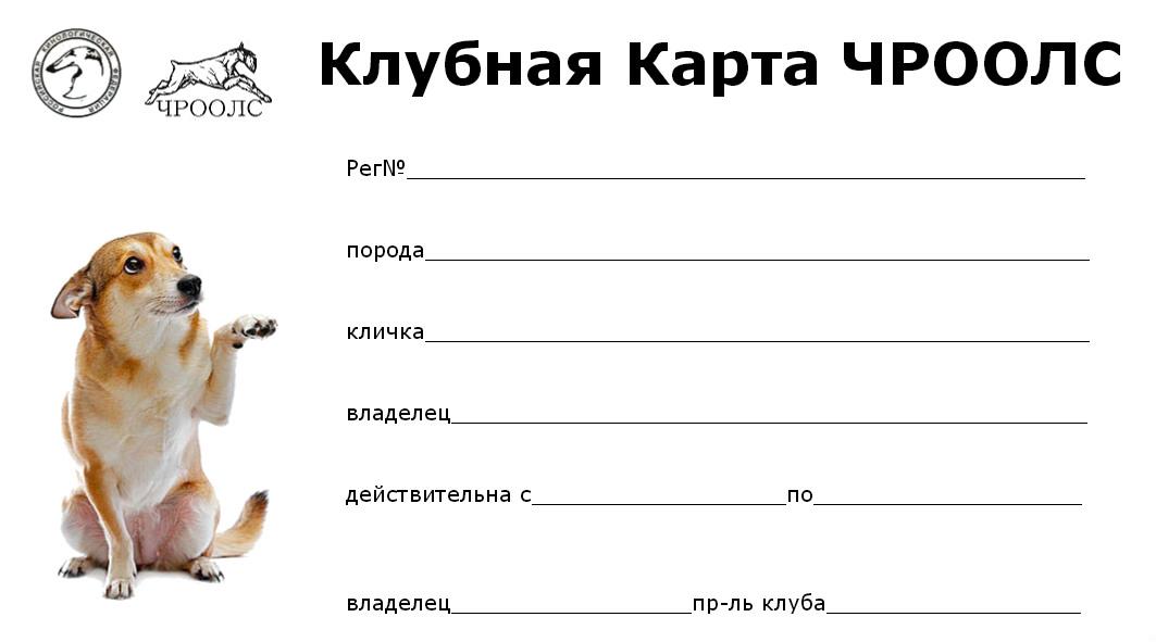Гордость Урала - 2018
